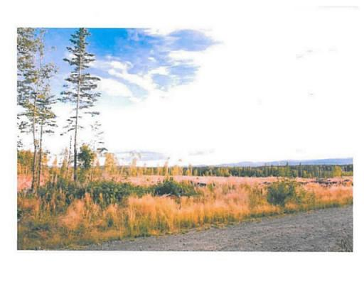 Lot 6 Bell Place, Mackenzie, British Columbia  V0J 2C0 - Photo 5 - N227298