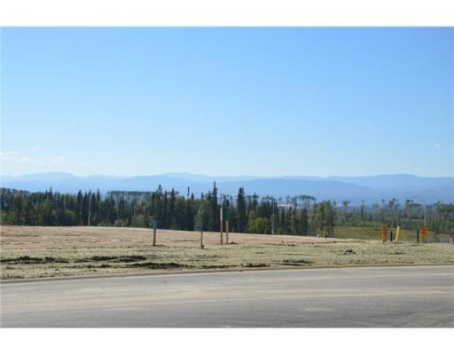 Lot 6 Bell Place, Mackenzie, British Columbia  V0J 2C0 - Photo 8 - N227298