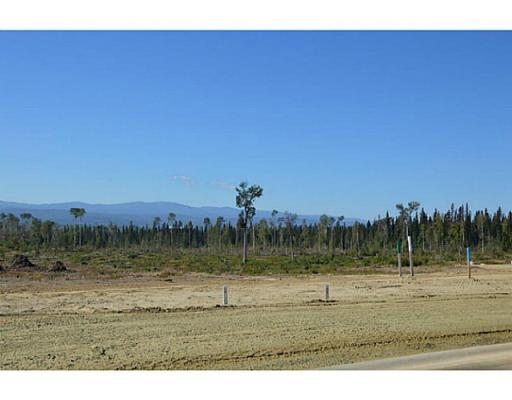 Lot 10 Bell Place, Mackenzie, British Columbia  V0J 2C0 - Photo 8 - N227303